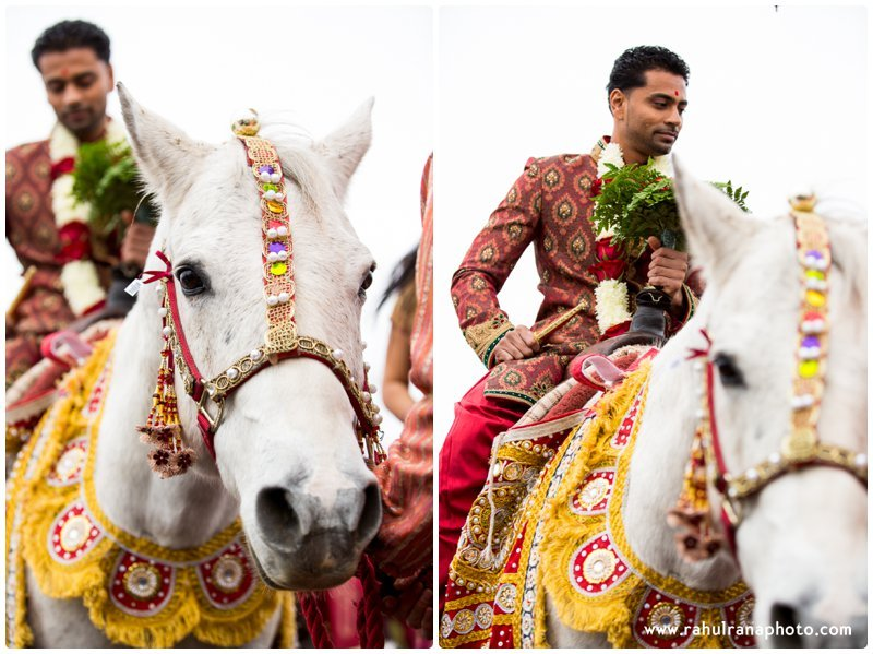 Neha Keyur - Horse Baraat Chicago Illinois Wedding - Waterford Banquets - Rahul Rana Photo