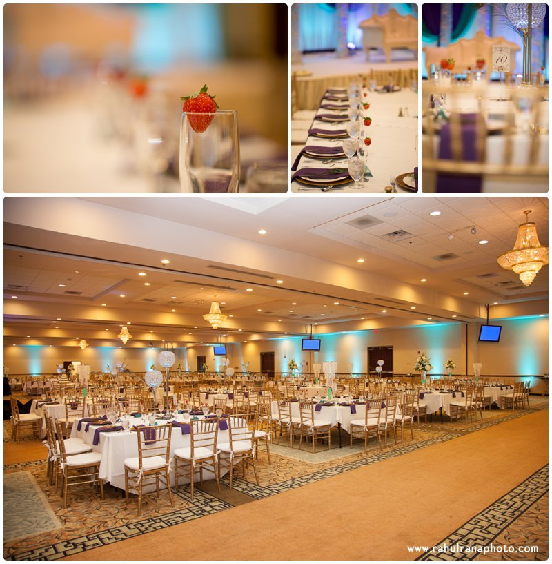 Neha Keyur - Reception Venue Elmhurst Illinois - Waterford Banquets - Rahul Rana Photo